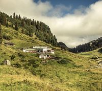 Alpe Tritsch im Moostal